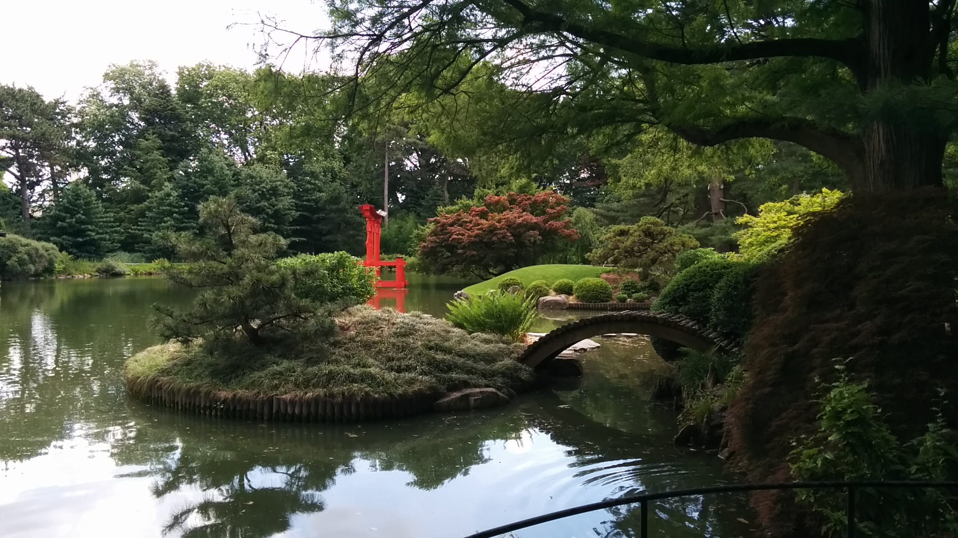 Brooklyn botanic garden: un luogo incantato