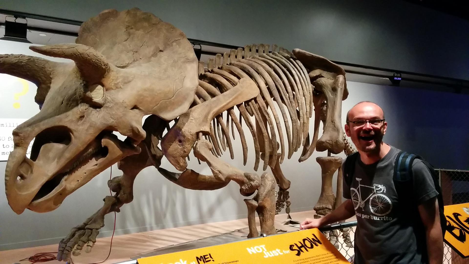 Triceratopo!